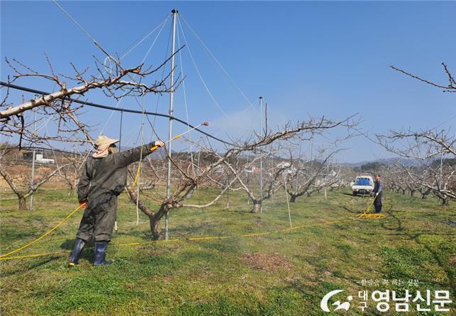 청도농작물병해충발생긴급일제방제추진 (1).jpg